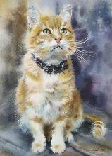 Postcard Watercolor cats 7
