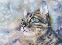 Postcard Watercolor cats 10