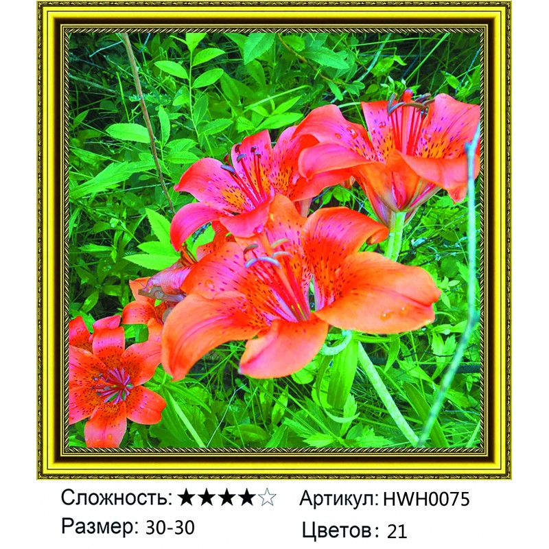 Алмазная мозаика на подрамнике HWH0075