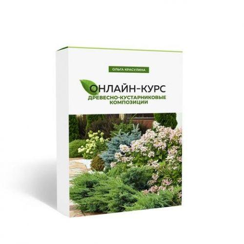 Древесно-кустарниковые композиции (Ольга Красулина)