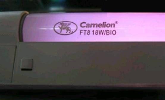 Лампа для растений Camelion 18W FT8-18W-BIO