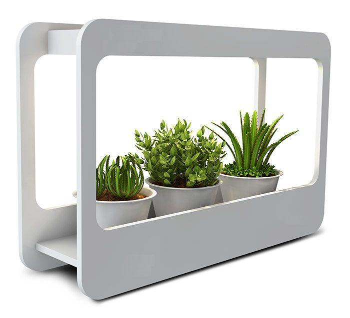 Светильник для растений Gauss 14W MG005