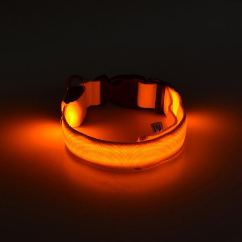 Светящийся Ошейник, Цвет Оранжевый