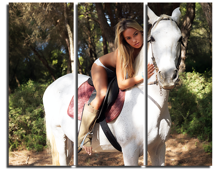 Модульная картина Девушка на коне