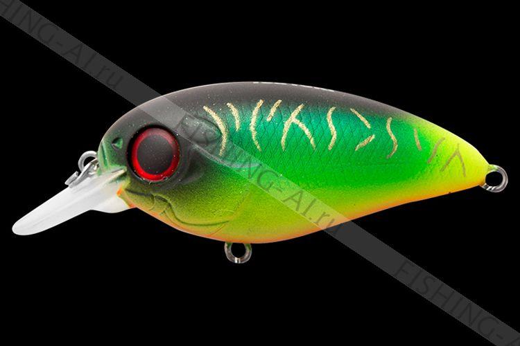TsuYoki SWING 50F 013