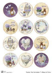 Set lavender 7