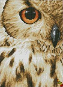 Колибри. Взгляд Совы. А-4 (набор 1275 рублей)