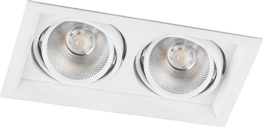 Встраиваемый светильник Feron AL202 2x20W